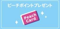 f:id:mizuhosakura555:20180812062021j:plain