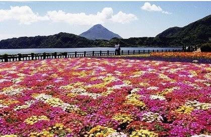 揖宿 池田湖
